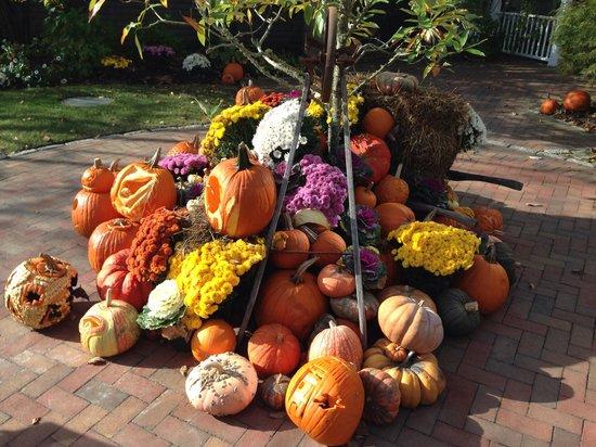 The Wauwinet: Master Pumpkin Carvers