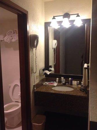 Baymont Inn & Suites Lake Dillon : Sink,hairdryer