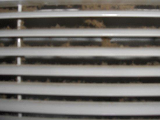 Domaine De La Begude : état du radiateur