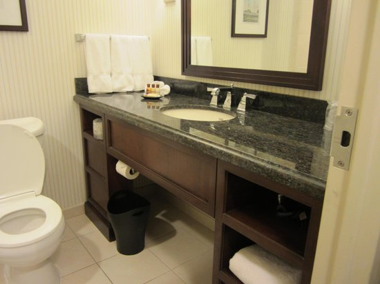 Sheraton Norfolk Waterside Hotel: bathroom