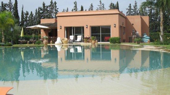 Piscine vue de notre douria photo de oasis jena for Oasis piscine belfort