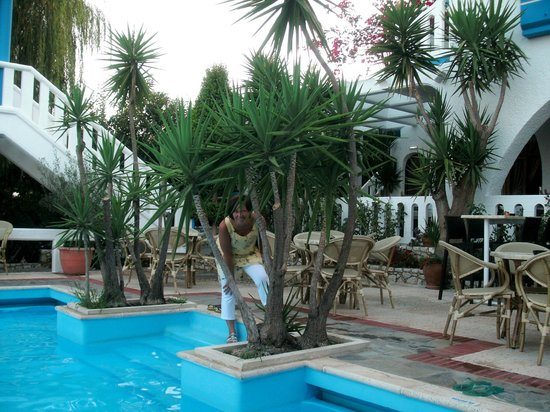 Folia Apartments: Pool zone