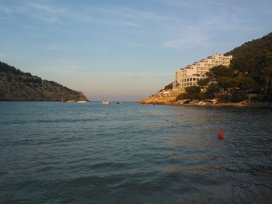 El Pinar Aparthotel: beach