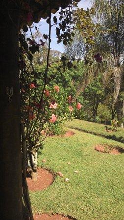 Pousada Luz e Paz : Essa é a vista da varanda