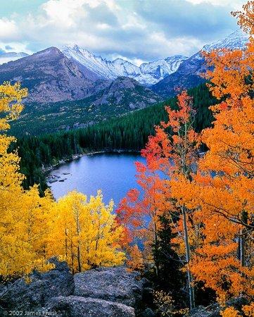 Aspen and Evergreen Gallery : Autumn Aspen above Bear Lake by James Frank