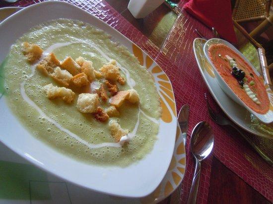 The Pickled Onion B&B & Restaurant: Avocado soup (yum!!)