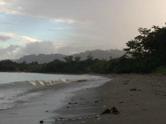 Blue Osa Yoga Retreat and Spa : Beachfront1