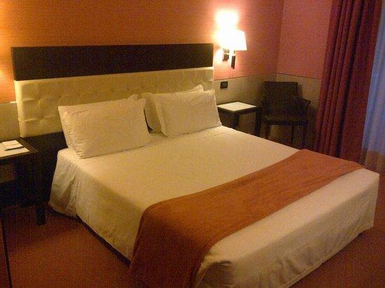 BEST WESTERN Gorizia Palace Hotel : Stanza 312