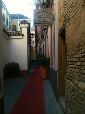 Hotel Amadeus: hotel entrance - red carpet for guests!
