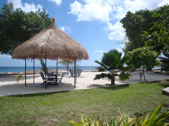 Islander Hotel : plage