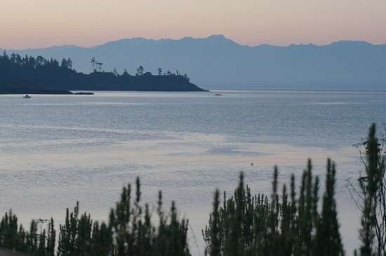 Sooke Harbour House Resort Hotel: OLympics view