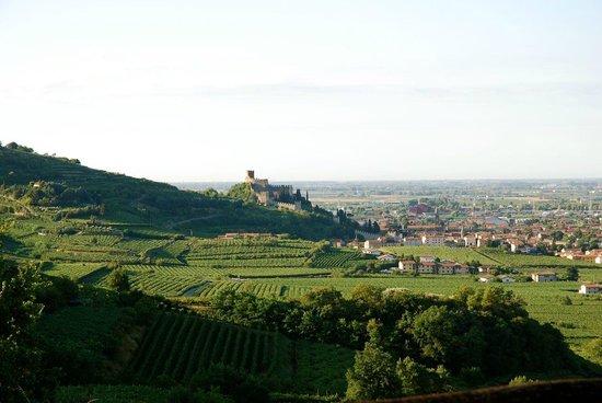 Agriturismo Libero: Blick vom Haus auf Soave