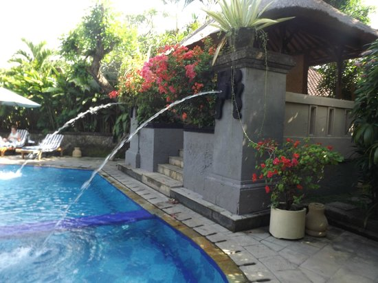 Sri Phala Resort & Villa: Pool
