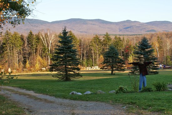 Robert Frost Mountain Cabins : View of mountains and property