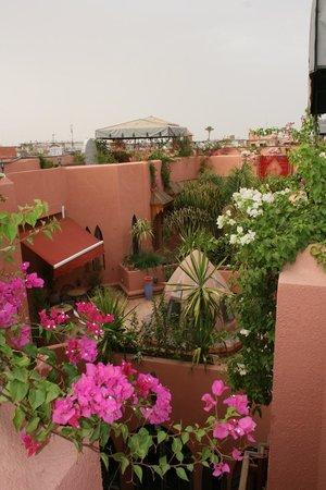 Riad Amira Victoria: Blick vom Dach