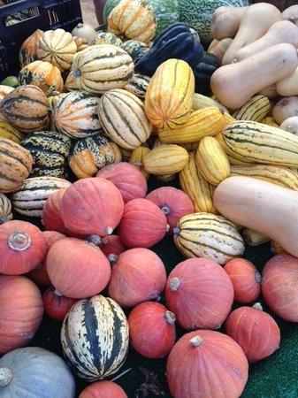 Studio City Farmers Market: Gourds