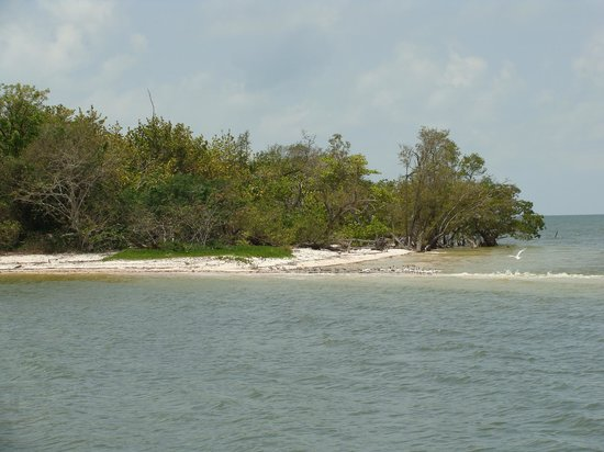 Everglades National Park Boat Tours: Everglades, Florida