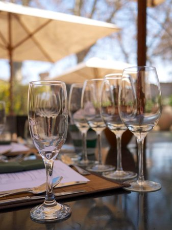 Driving Mendoza Wine Tours