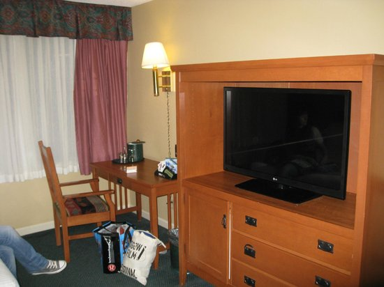 Sawridge Inn and Conference Centre Jasper: Bedroom TV view