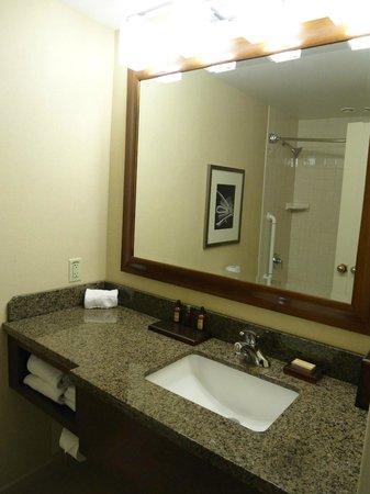Detroit Marriott at the Renaissance Center : Bathroom