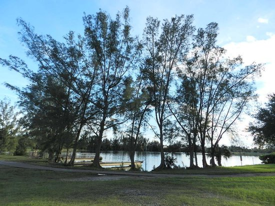 Tropical Park: One of the lakes.