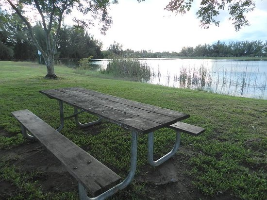 Tropical Park: Picnic tables overlooking the lakes