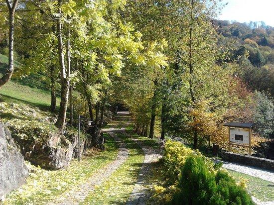 Agriturismo La Peta: il vialetto