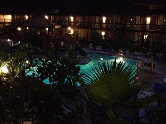 Millennium Buffalo : Pool view at night