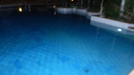 Park Club Europe Hotel: La piscina la notte