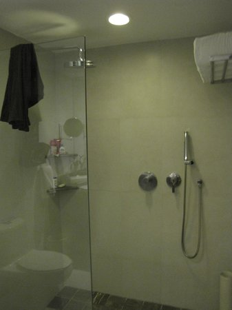 Dreams Huatulco Resort & Spa: No shower door or tub in room