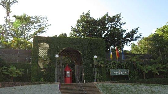 Im orchideenhaus bild von botanical gardens jardin for Bd du jardin botanique