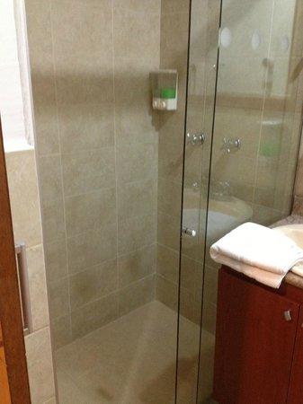 Hotel Cyan Suites: solo ducha, no tiene bañera