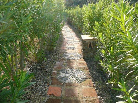 Molino Rio Alajar: pasillos