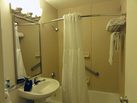 DoubleTree by Hilton Hotel & Suites Pittsburgh Downtown: Small bathroom, shelf over toilet