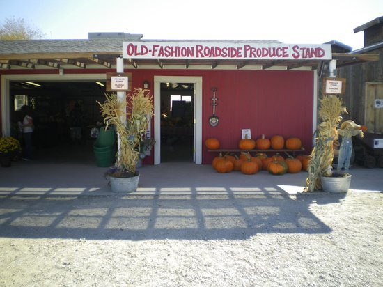 Lattin Farms: Old-time produce stand
