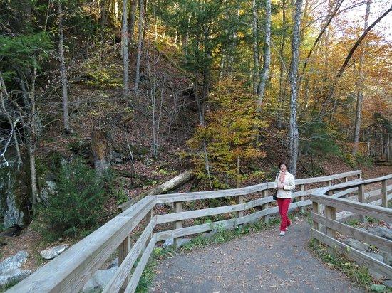 At Moss Glen Falls