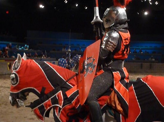 Medieval Times: Front row view!