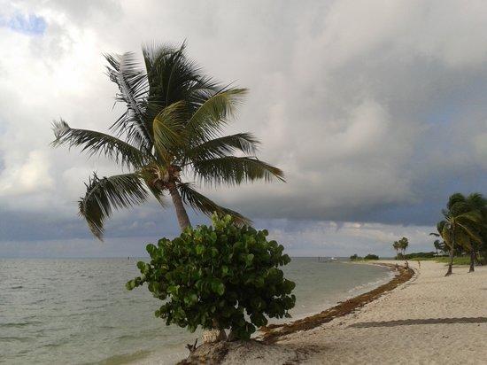 Sombrero Beach : morning shower approaching