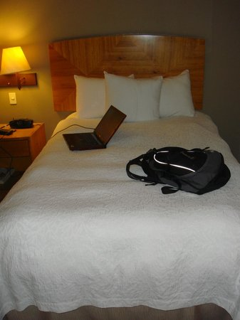 Hampton Inn by Hilton Guayaquil-Downtown : double bed