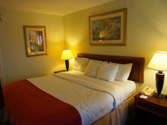 多森南部假日飯店照片