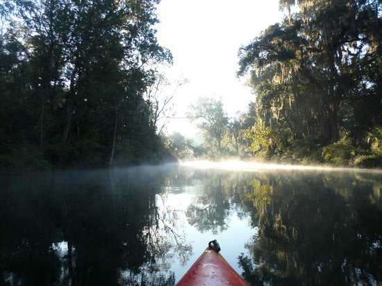 Silver Springs State Park: The view on Sunday morning in my kayak :)