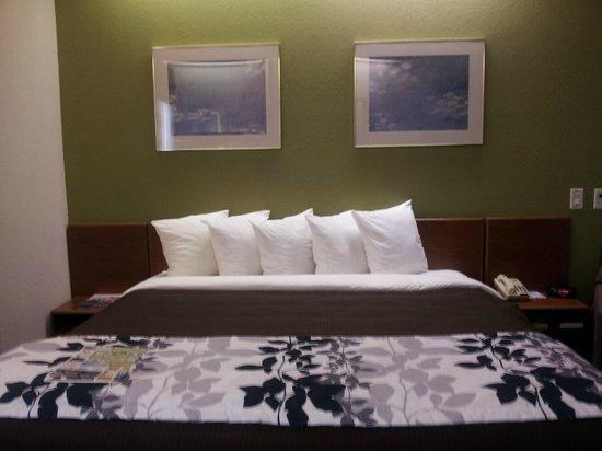 Sleep Inn St. Augustine: King Bedroom
