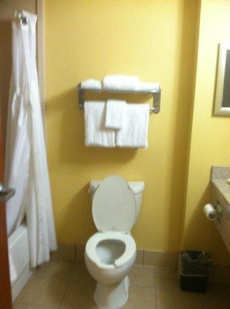 Holiday Inn Express Charleston North: Oct25262013bathroom