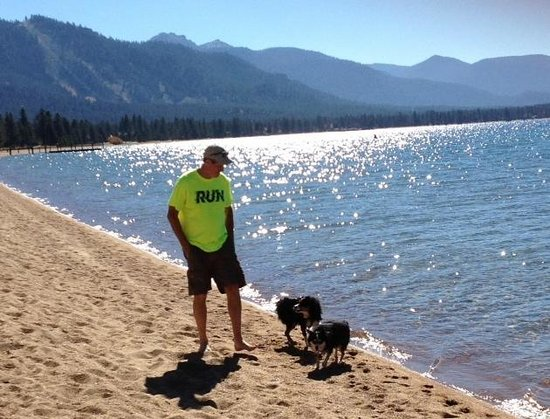 ‪هوليز بليس: At a Dog-Friendly Lake Tahoe Beach Closeby‬