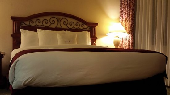 DoubleTree Suites by Hilton Hotel Nashville Airport: King Bed