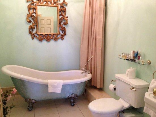 The Dawson Hotel Bathtub Mirror And Shower Curtain