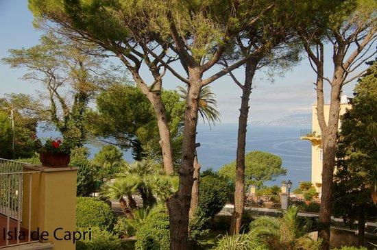 Hotel San Michele : desde el hotel