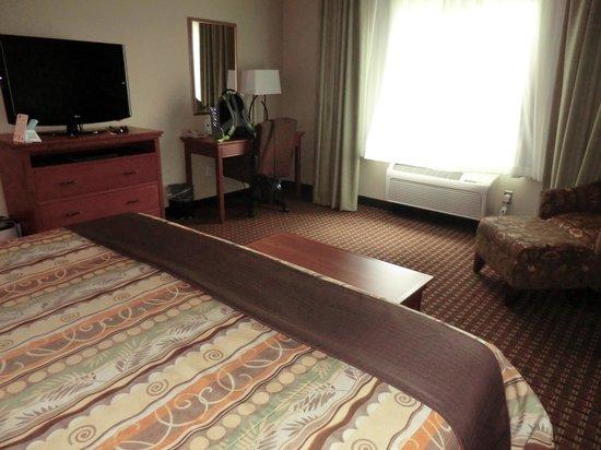 BEST WESTERN PLUS Grand Island Inn & Suites: #113