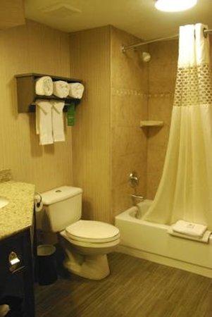 Hampton Inn Durango: The Bathroom