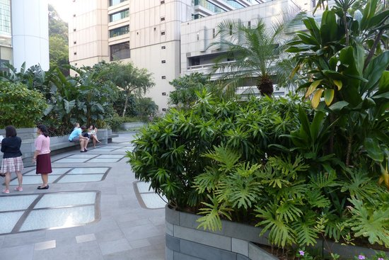 Upstairs garden and terrace area at Pacific Place - Picture of ...